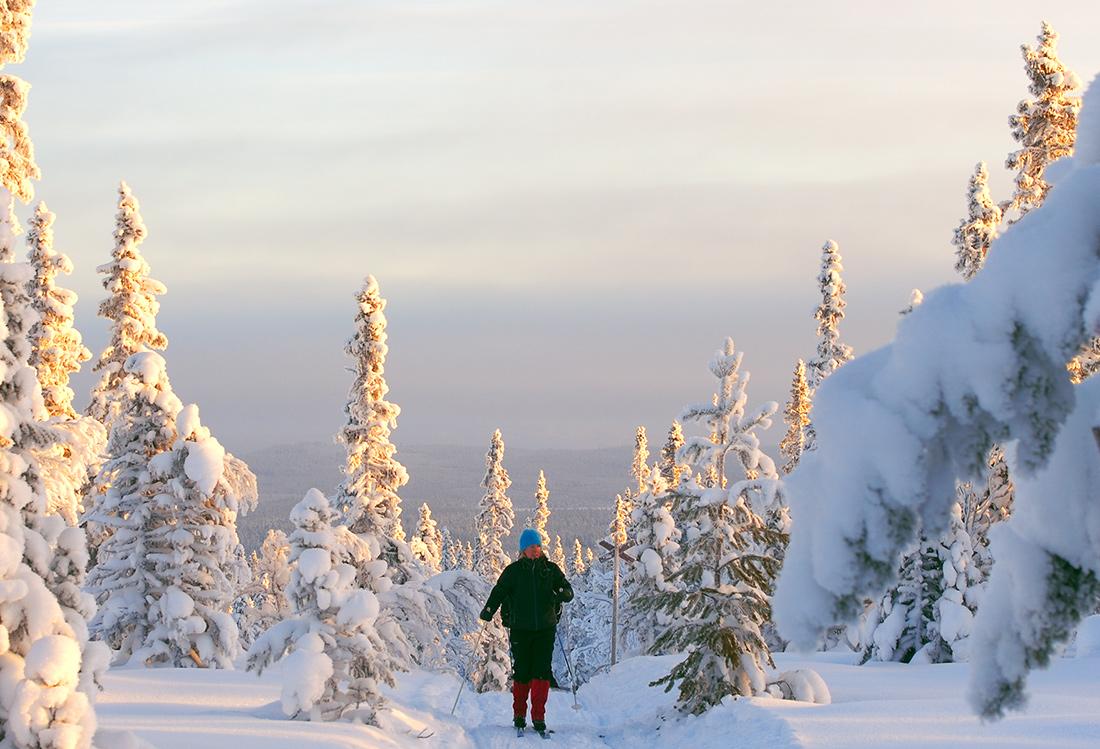 Att Skida Olivehällsrundan är En Fjällupplevelse I Världsklass I Södra Årefjällen.