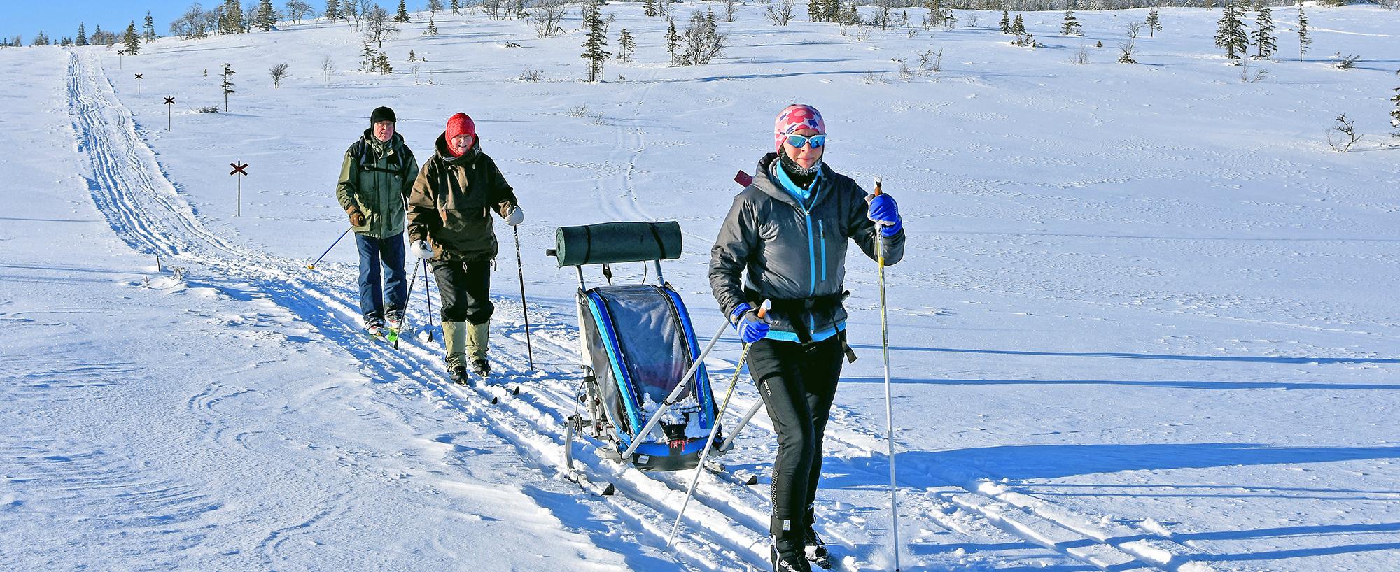 Längs Hållvallsleden Skidar Du Delvis över Platån I Ottsjö . En Fjällupplevelse I Världsklass I Södra Årefjällen.