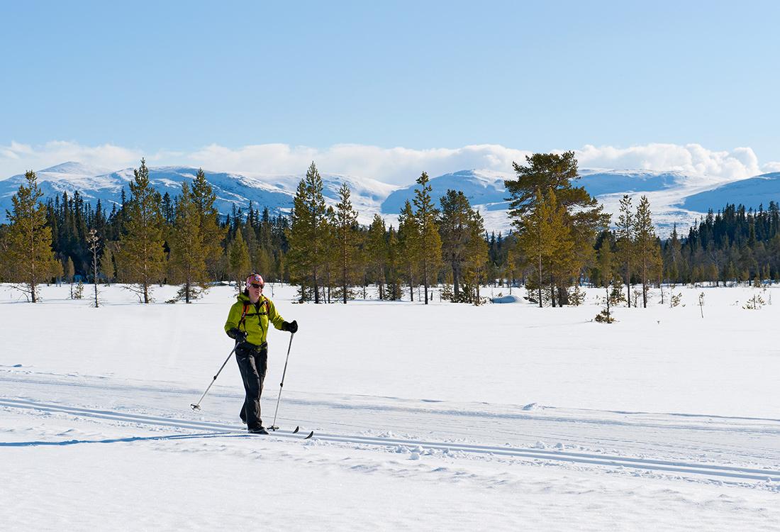 Holmenkollen är En Unik Skidtur I Vålådalens Naturreservat. En Fjällupplevelse I Världsklass I Södra Årefjällen.