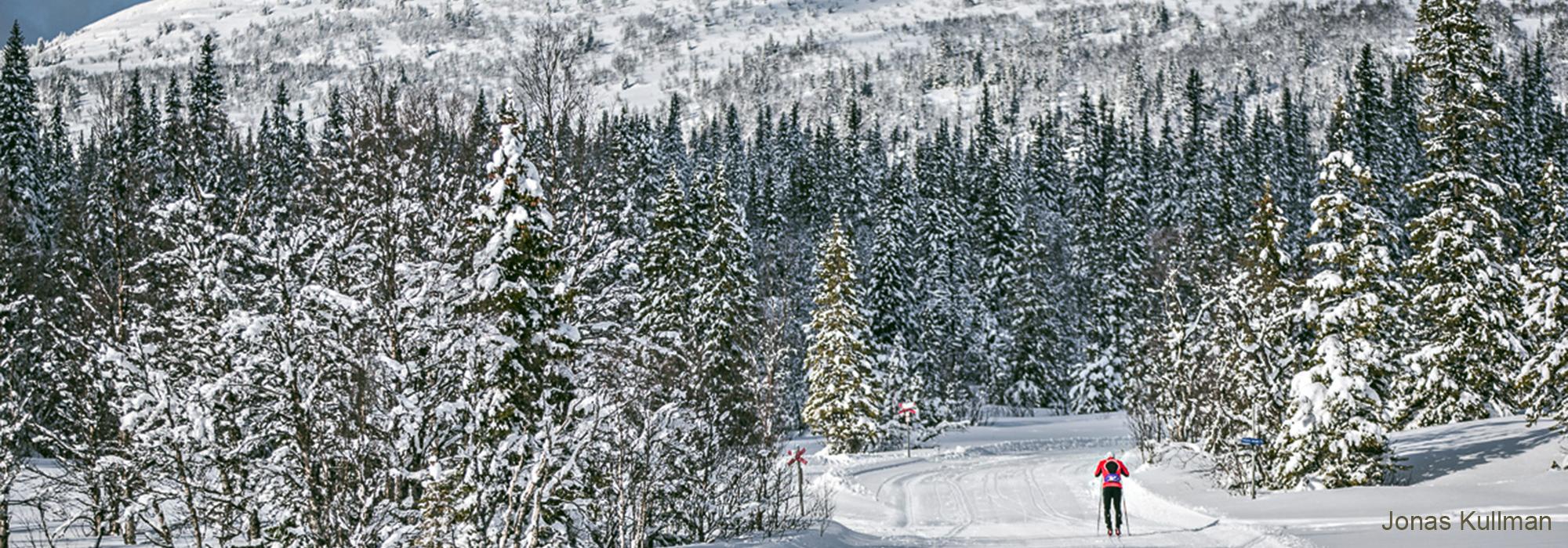 Södra Årefjällen, Fjällupplevelser På Skidor, Edsåsdalen, Vackermorundan, 120