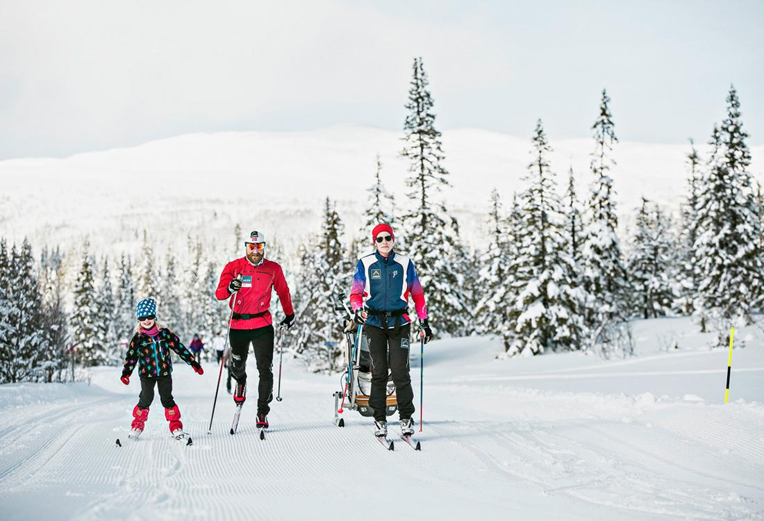 Heldagstur På Skidor Längs Älgbergsrundan I Edsåsdalen. En Fjällupplevelse I Världsklass I Södra Årefjällen.