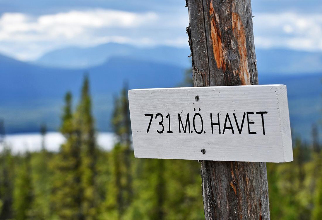 Från Kläpphögarna är Endast 731 M.ö.h. Men Utsikten är Magisk. Fjällupplevelser I Världsklass I Södra Årefjällen.