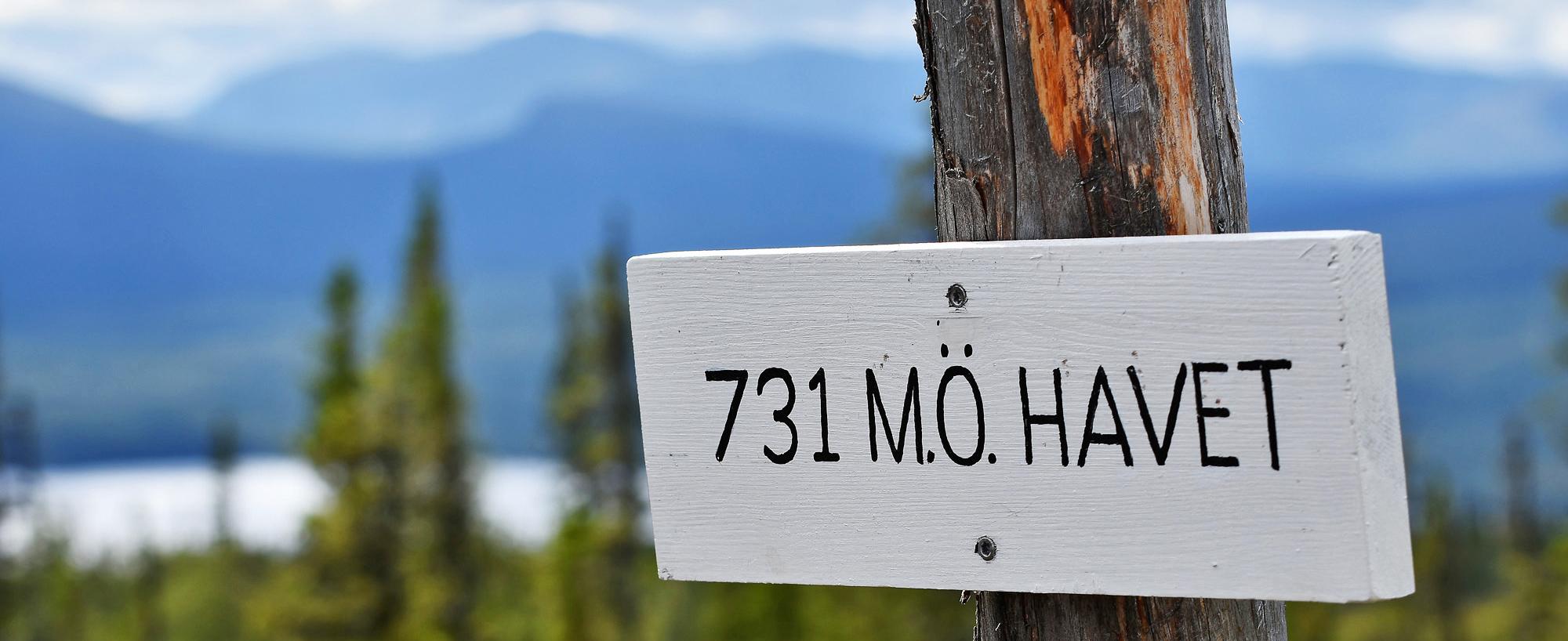 Utsiktstornet är Endast 731 M.ö.h. Men Utsikten är Magisk. Fjällupplevelser I Världsklass I Södra Årefjällen.