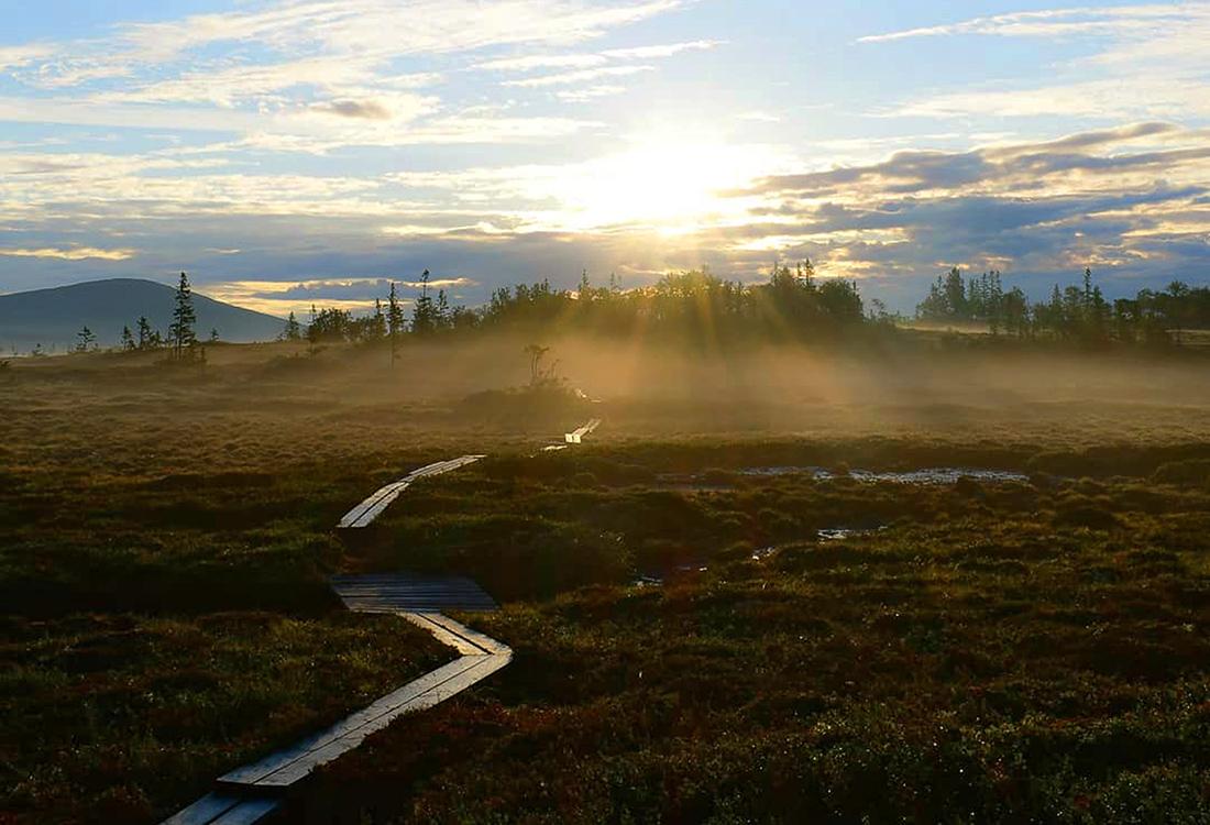 Vandringsleden På Platån I Ottsjö. Fjällupplevelser I Världsklass I Södra Årefjällen.