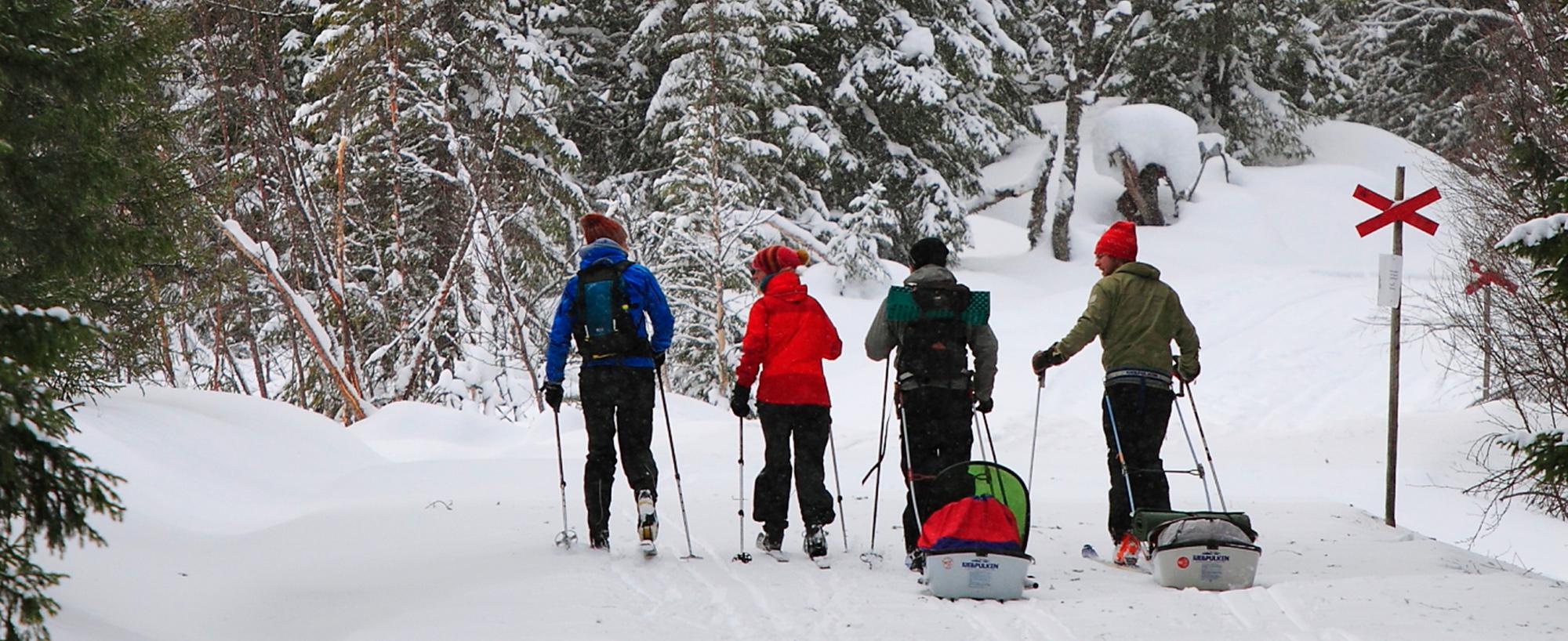 Att Skida Sönkmyrrundan I Edsåsdalen är En Av Fjällupplevelserna I Världsklass I Södra Årefjällen.