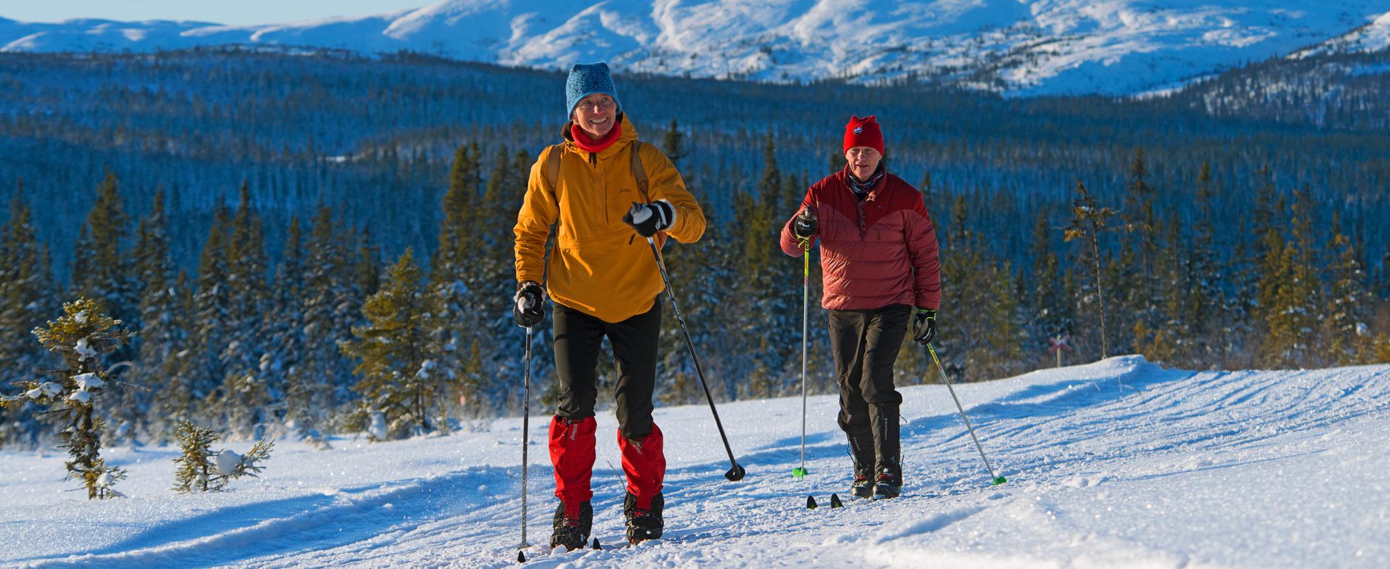 En Tur I Skidspåren I Södra Årefjällen är En Fjällupplevelse I Världsklass.