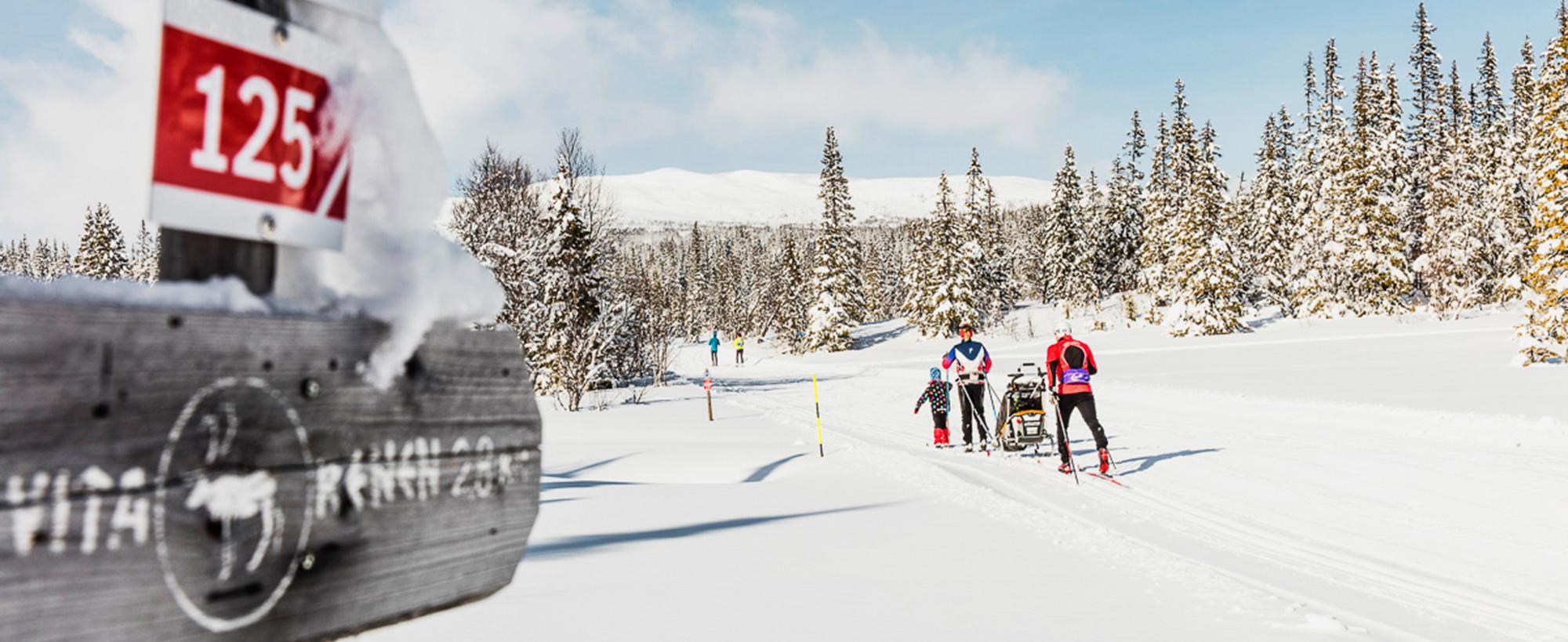 Att åka Skidor I Väfjällsrundans Fina Skidspår, I Edsåsdalen, är En Av Fjällupplevelserna I Världsklass I Södra Årefjällen.