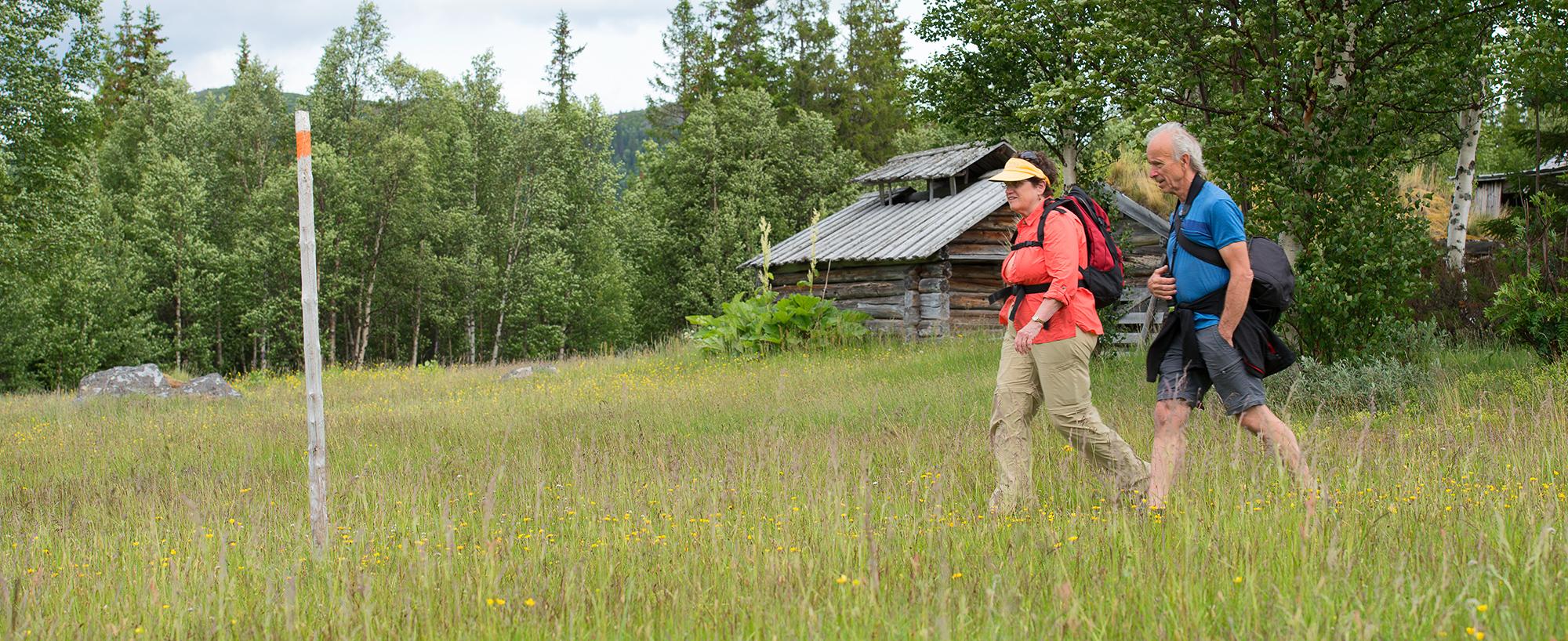 Fäbodrundturen Vid Bottenvallen är En Fjällupplevelse I Världsklass I Södra Årefjällen.