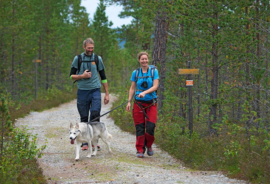 Vandring Med Hund Längs Södra Ridvadsrundan. En Fjällupplevelse I Världsklass I Södra Årefjällen.